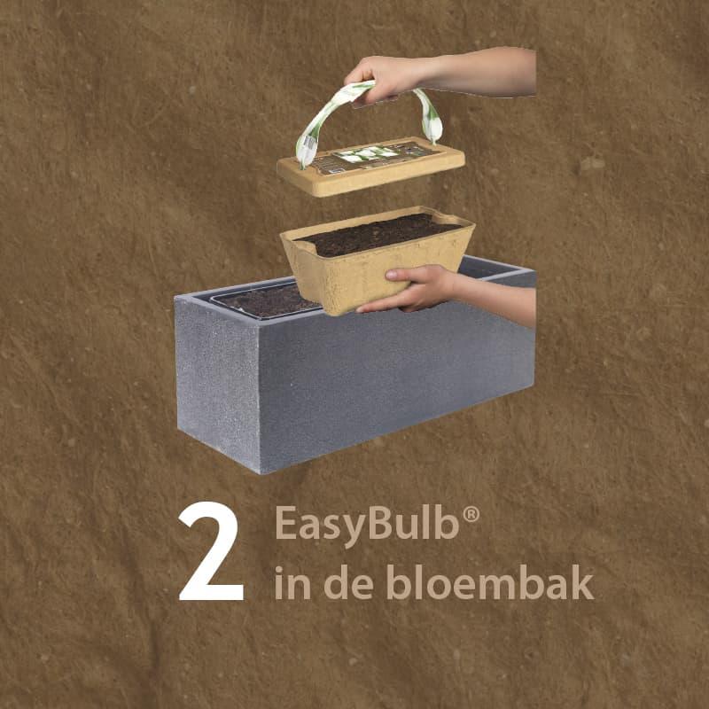 Van der Starre - Easybulb