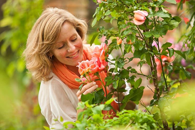 Van der Starre - Rosa Climber Orange