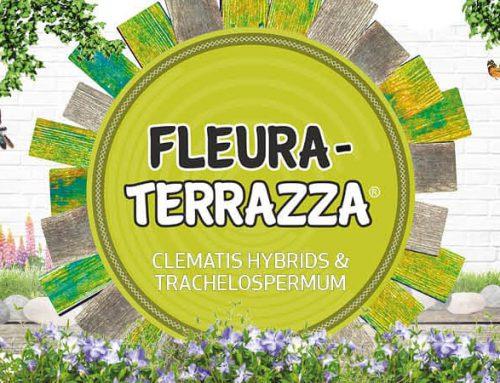 Speciaal voor het terras en balkon: FleuraTerrazza